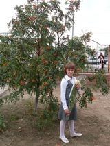 Коробова Екатерина Алексеевна